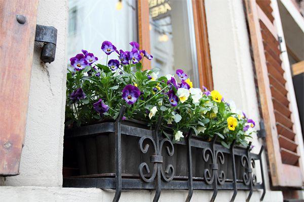 15 fotos de floreiras de janela espetaculares