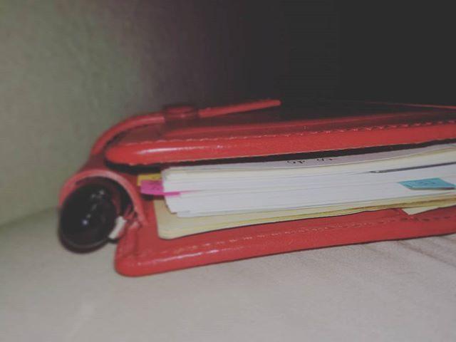 枕元の可愛こちゃん。  文房具やさんなんぞ到底ゆっくり行けない体調なため、即席インデックスをつけました。  来年は一冊を愛せるかな♥  #手帳沼 #ミニ6穴  #ロロマクラシック #レイメイ藤井  #ダヴィンチ手帳 #赤い手帳 #お買い物病 #本革 #赤ロロマ #能率手帳ゴールド #能率手帳 #万年筆 #プラチナセンチュリー #platinumcentury #platinum3776 #3776  #PRADA #プラダ
