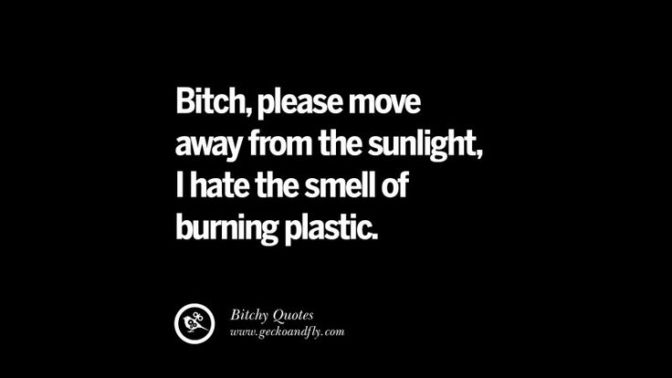 Bitch, please move away from the sunlight, I hate the smell of burning plastic. 27 Insulting 'Bitch Please' Quotes And Meme For Your Enemies
