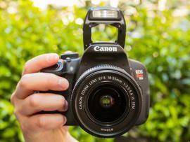 Best entry-level digital SLR cameras