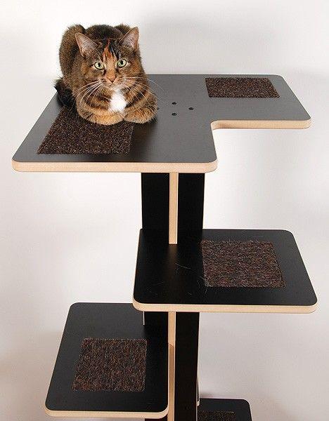 Modern Cat House 14 best kitty's gotta scratch images on pinterest | cat scratcher