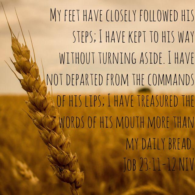 Job 23:11-12 | Job, Words, Affirmations