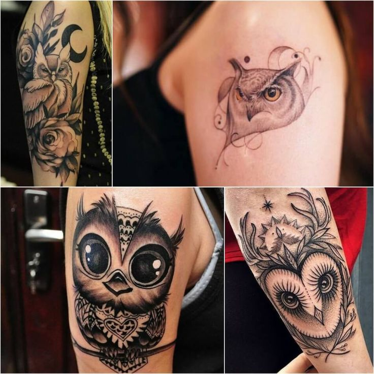 Owl Tattoo Ideas With Meanings
