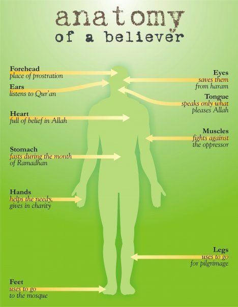Are you putting your body to good use?? #islam #muslims #believer