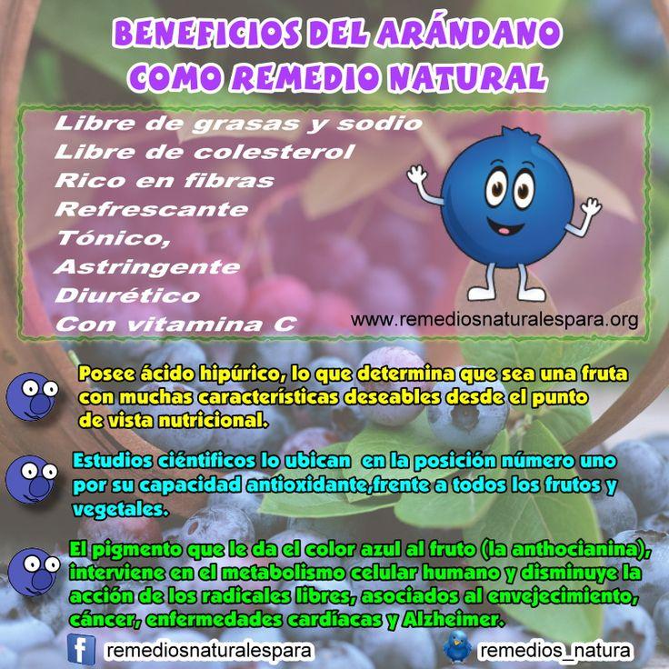 El Arándano: Muy rica fruta, y ¡ cuántos beneficios para la salud !