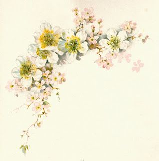 Antique Images: Free Flower Graphic: Vintage Dogwood Flower Clip Art from Vintage Wedding Book