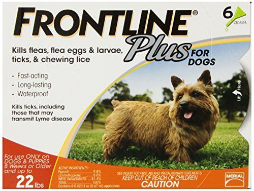 Frontline DFRSMPLUS6 6-Pack 11 to 22-Pound Plus Dog Flea and Tick Treatment, Small, Orange >>> Read more info by clicking the link on the image. #DogFleaTickControl
