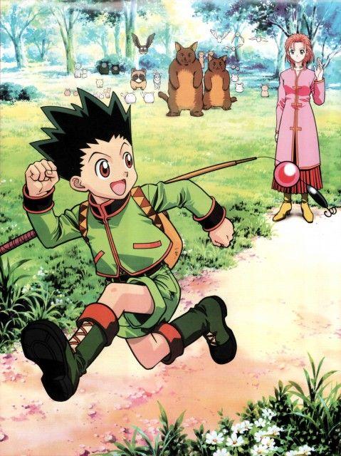 Yoshihiro Togashi, Nippon Animation, Hunter x Hunter, Gon Freecss