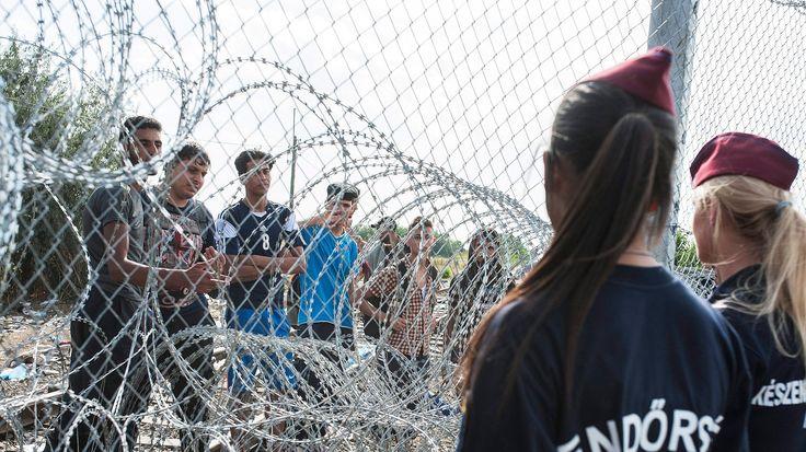 Rogán: A határkerítés elbontása egész Európa biztonságát fenyegetné - https://www.hirmagazin.eu/rogan-a-hatarkerites-elbontasa-egesz-europa-biztonsagat-fenyegetne