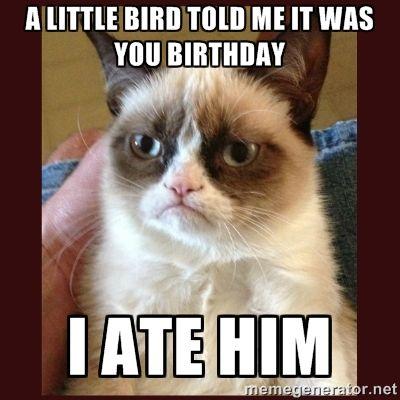 grumpy cat birthday meme | Tard the Grumpy Cat - a little bird told me it was you birthday i ate ...