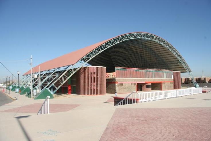 Gimnasio Ana Gabriela Guevara @ Hermosillo, Sonora, Mexico. Montaje de estructura metalica ejecutada en 6 semanas!