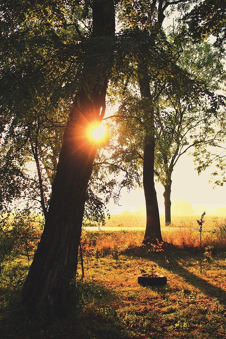 #autumn #autumnsun #village #polishvillage