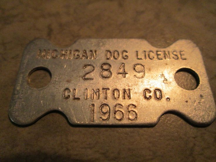 Dog License - 1966 Clinton County Michigan Dog Tag, Pet Collectible, Dog Tax, Metal License / Vintage by AuctionAddict38 on Etsy