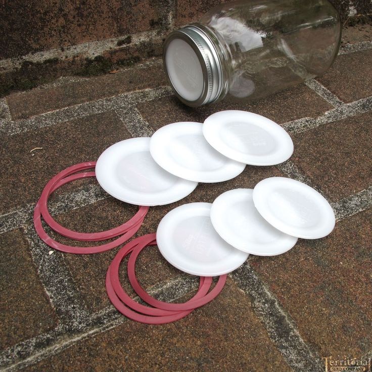 Resuable Canning Lids and Rubber Rings-  How cool is this?!