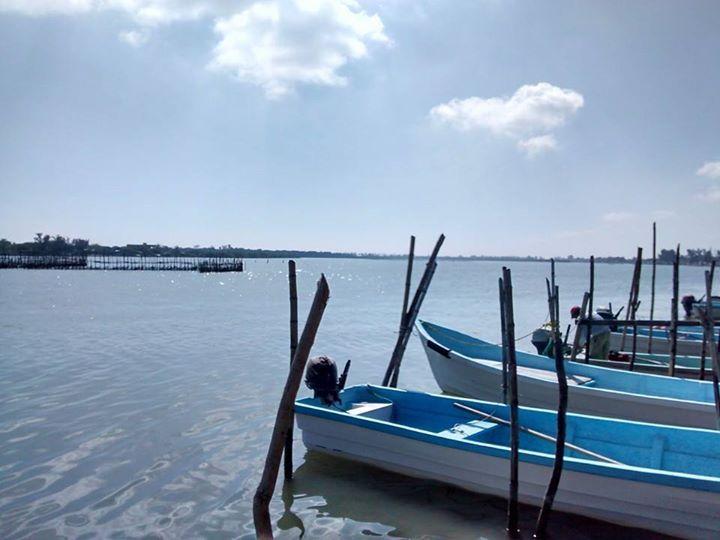 Tuxpan: Playa, mariscos y paisajes únicos cerca del DF - Dónde Ir