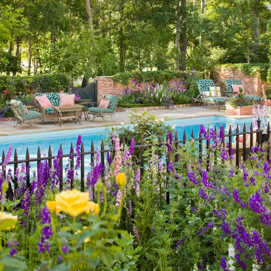 Traditional Garden With Pool: 9 Best Plants And Gardens I Would Probably Kill Images On