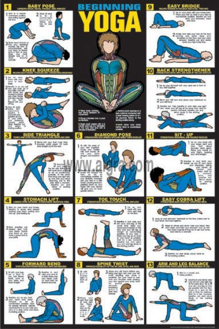 The Yoga Education poster provides you with the steps to each stretch. This poster is designed for beginner yogis to gain the full benefits from each pose.
