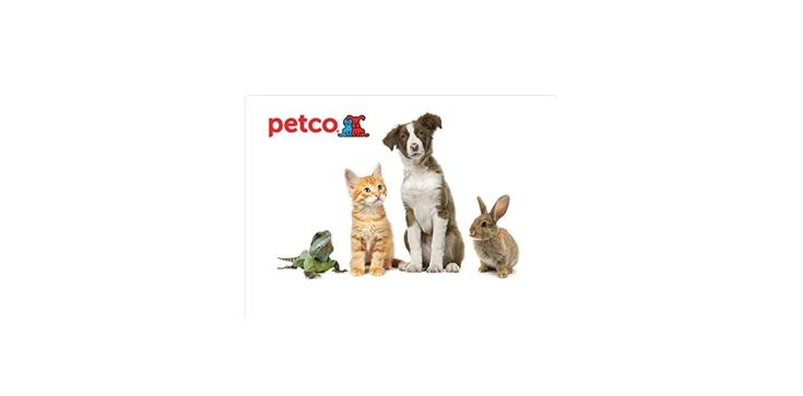 $50 Petco IHOP Restaurant or Designer Shoe Warehouse Gift Card for $40 at Amazon