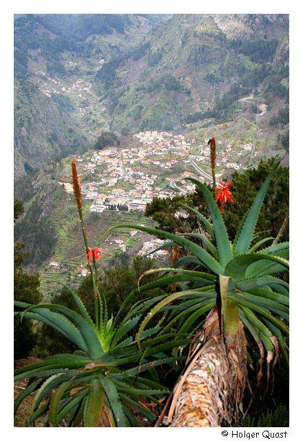 Madeira - Cabo Girao - Curral das Freiras - AIDA Kreuzfahrt - Kanaren
