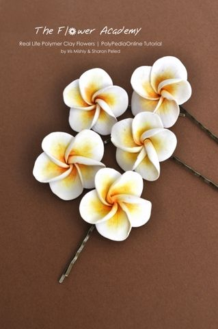 Polymer Clay Flower Tutorials - Frangipani (plumeria) bobby pins project