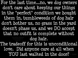 Love this!: Animals, Dog Owners, Dogs, Stuff, Quotes, Pet, So True, Puppy, Love My Dog