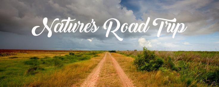 Nature's Road Trip