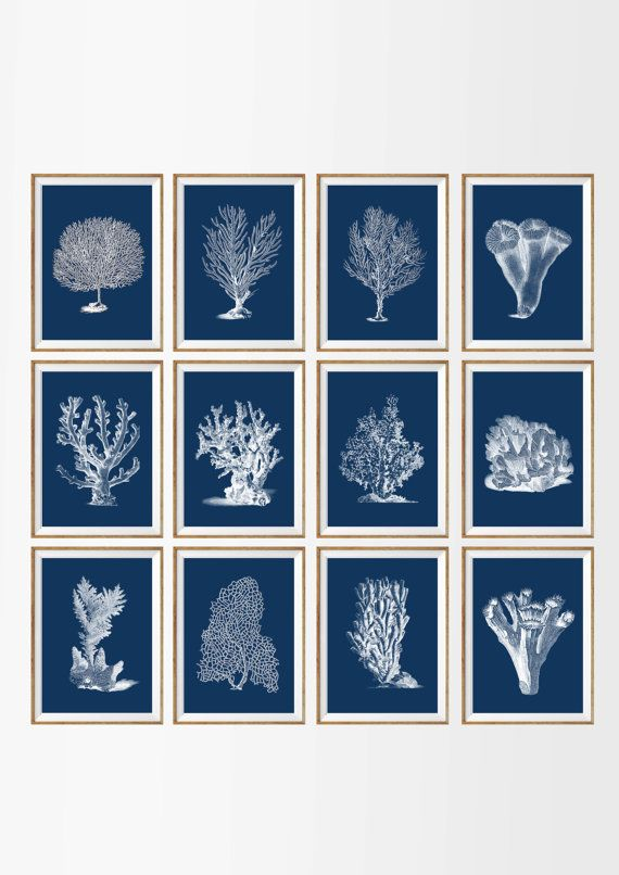 White Nautical Wall Decor : Best wall art images on