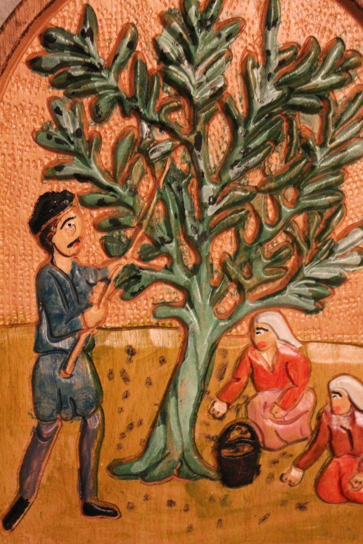 Olive harvest...