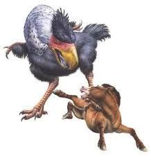 Image result for terror bird horse predators