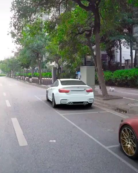 finest parallel parking automobile