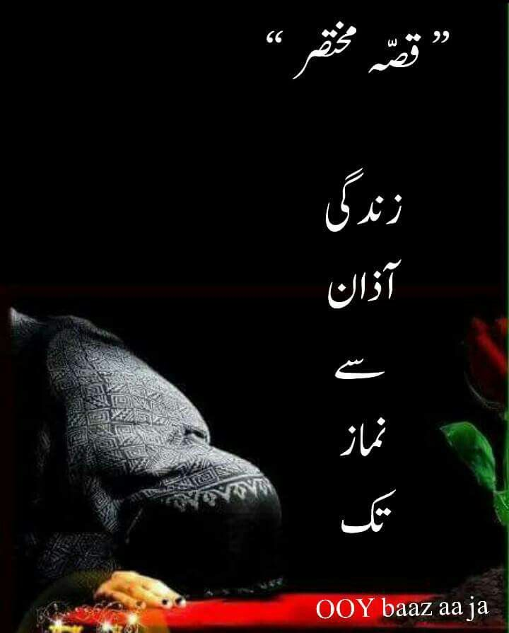 17 Best Images About Urdu /Hindi Quotes On Pinterest