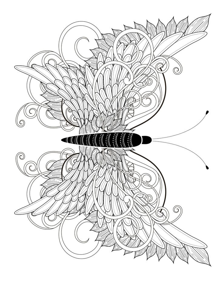 23 free printable insect animal adult coloring pages butterfly coloring page