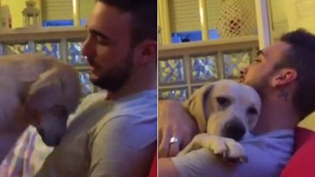 Dog owner can't stay angry at his naughty but loveable pooch as it begs for forgiveness and wraps its arms round him for a cuddle.