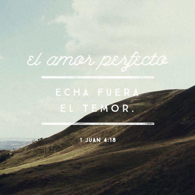 Donde hay amor no hay temor. Al contrario, el amor perfecto echa fuera el temor, pues el temor supone castigo. Por eso, el que teme no ha llegado a amar perfectamente.