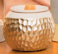 Scentsy. Beautiful fragrances for everyone. For the home, your skin, kids, laundry and more. Check it out here.