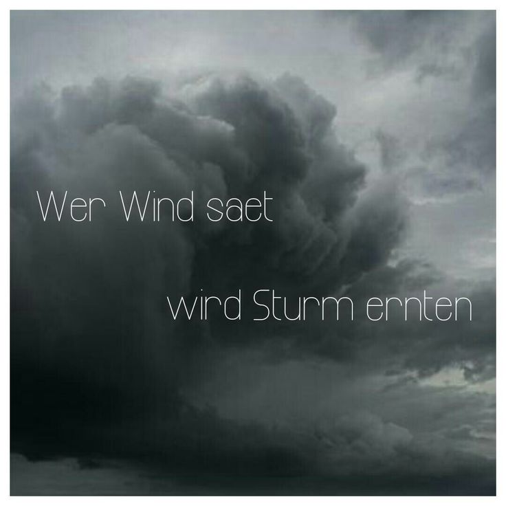 Wer Wind Sät Wird Sturm Ernten Bedeutung