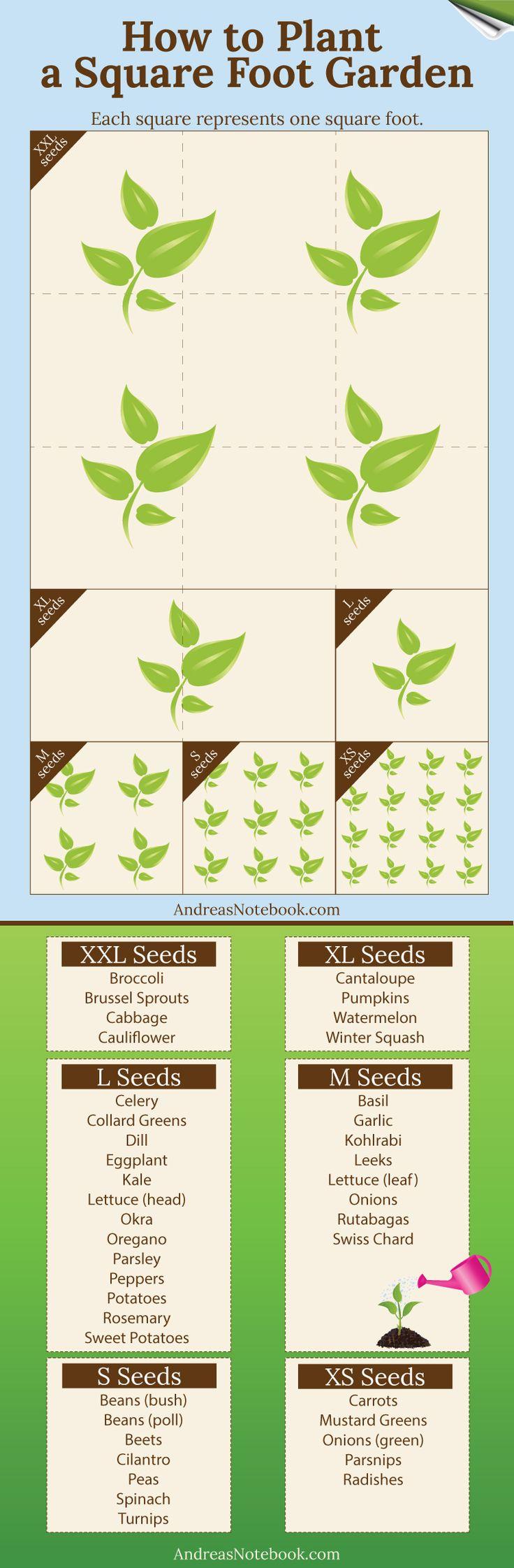 best vegetable and fruit garden images on pinterest vegetable