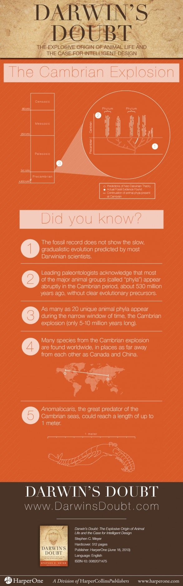 Why they call it the Cambrian explosion. Christian Creation Science And Apologetics