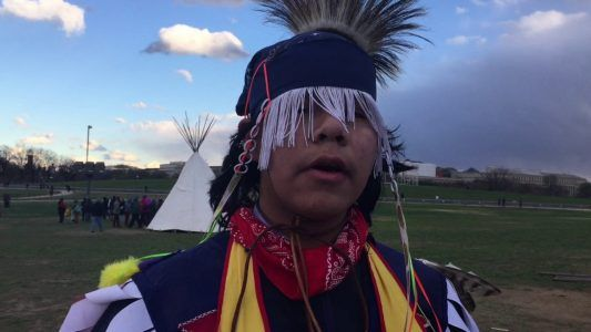 Washington DC Cherry Blossom Update / Tribes Protest Against Dakota Pipeline #news #alternativenews