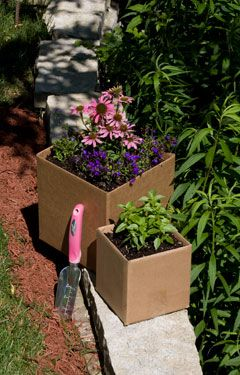 With this easy, eco-friendly and free gardening method, you'll have a better garden in a few weeks.: Gardens Ideas, Cardboard Boxes, Gardens Paths, Awesome Ideas, Flowers Beds, Compost Container, Great Tips, Cardboard Gardens,  Flowerpot