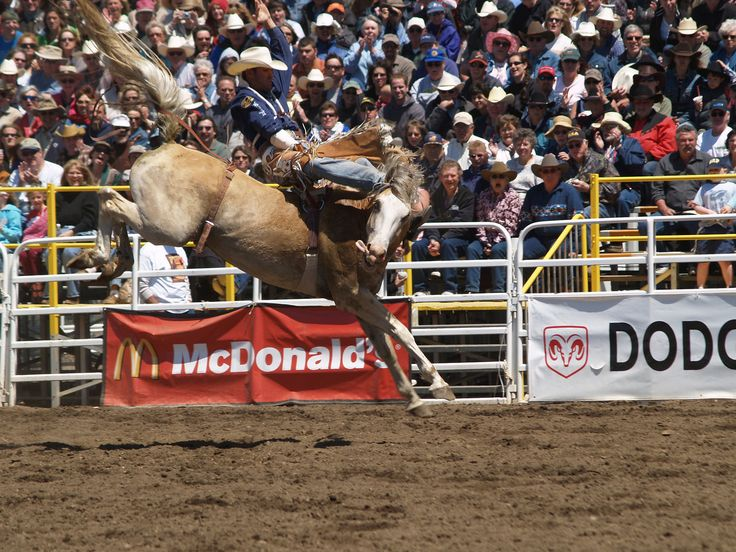 Sisters Rodeo:  From start to finish, this is what a World Class ride is all about. Bobby Mote in 2008.