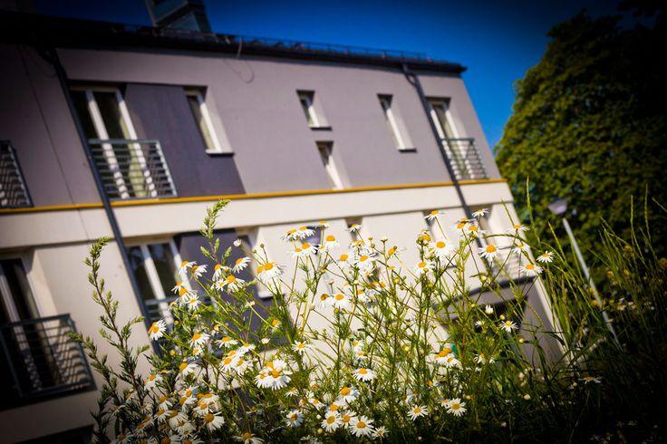 #Summer @ #Male_Blonia_Estate, #Szczecin, #Poland