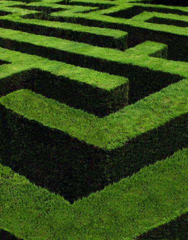 Getting lost in a garden maze