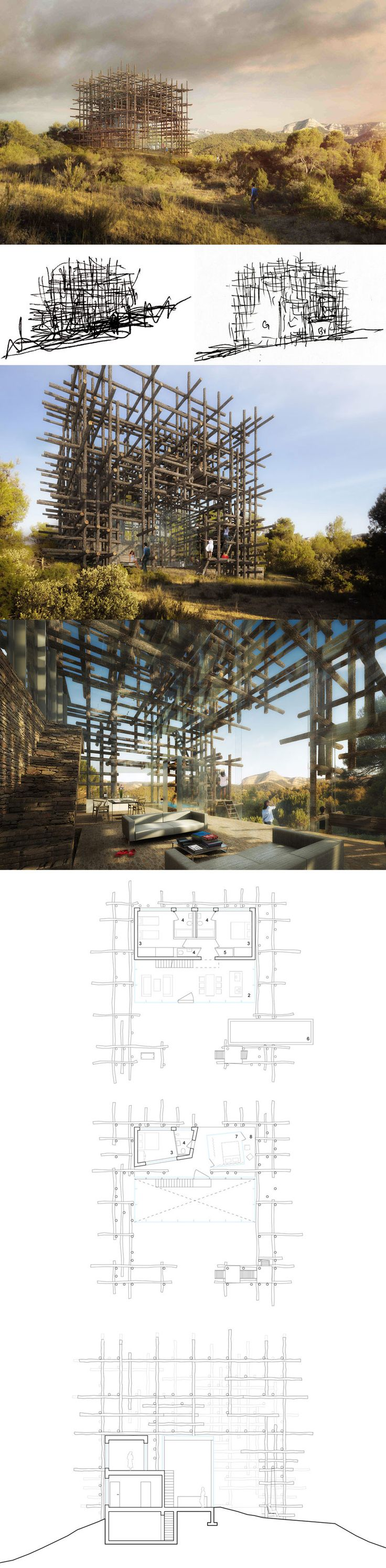 Sou Fujimoto, Geometric Forest Solo House, 2013, a glass and stone structure surrounded by a lattice of tree trunks, Cretas, Spain.