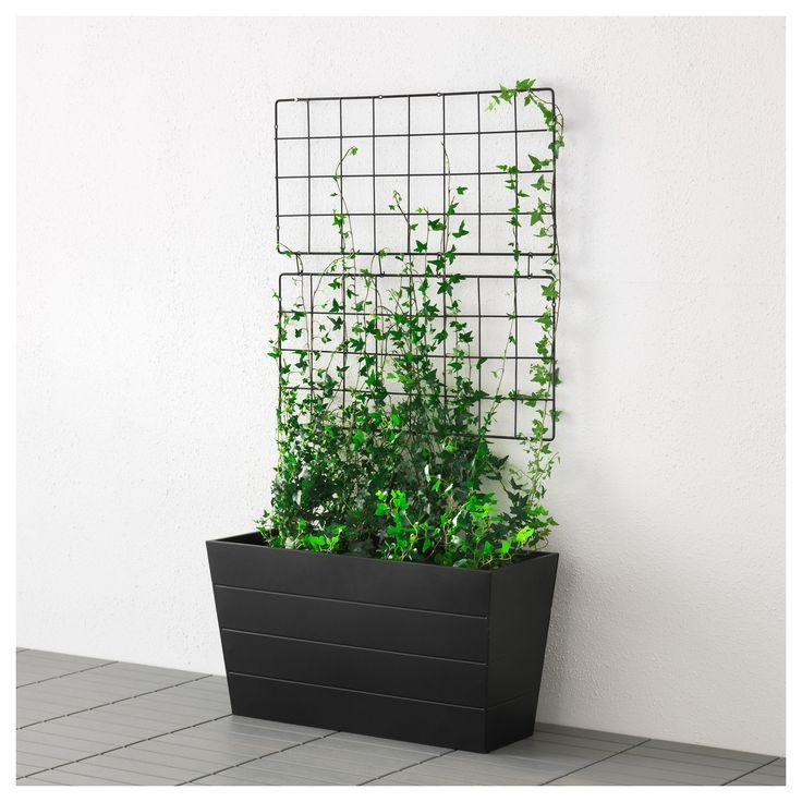 13 best images on pinterest ikea for Ikea barso trellis