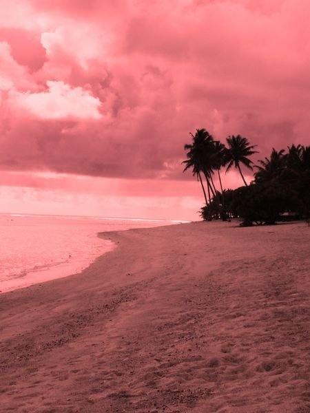 Pretty ...: Couleur Pink, Color Fusion, God Beautiful, Coral Everything, Colors Black Cor, Dusty Rose Mauve, Pinkish Coral, Pink Beautiful, Corals Ӎost