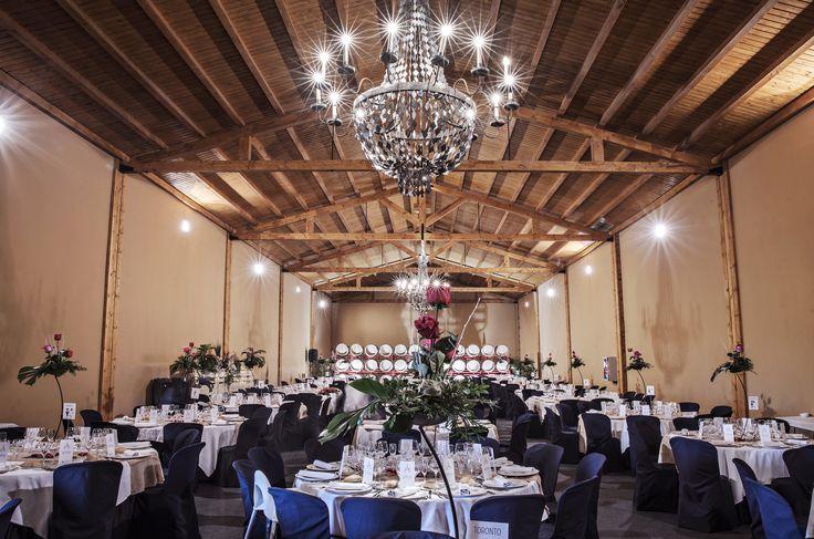#bodas #viñedos #Cariñena
