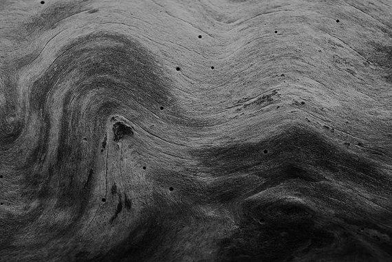 Nature Photography - Wood Grain Tree Woodland Modern Rustic Fine Art Print Grey Black and White Artwork : 16x20 Art 12x18 Print 8x10 Photo