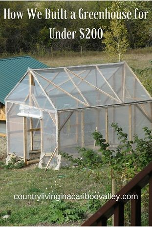 Want to find out how to build a greenhouse? We built ours for less than $200 and are growing peppers, tomatoes and squash!