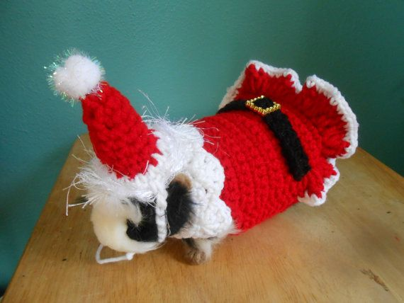 Guinea pig Sweater , Guinea pig clothes, Santa Costume for Guinea pig,Christm...